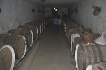 Weinkeller Gran Canaria