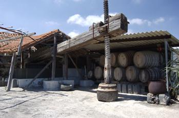 Alte Weinpresse auf Gran Canaria