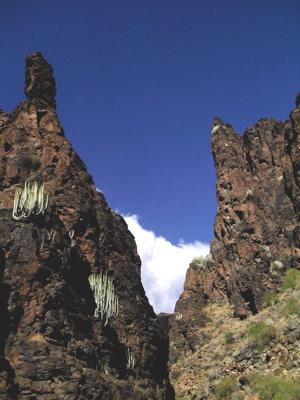 Wanderung im Barranco Hondo im Süden von Gran Canaria