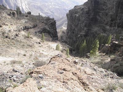 """Wandern auf der """"Ruta de Bentejui"""" im Zentrum von Gran Canaria"""