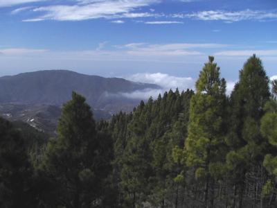 Wandern im Norden von Gran Canaria